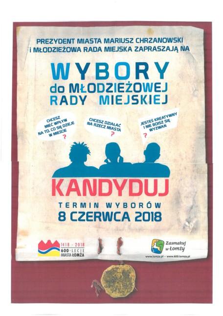 Wybory do Młodzieżowej Rady Miasta